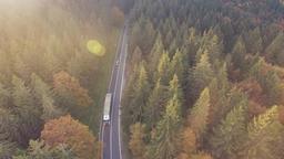 Aerial Asphalt Road through the Forest Footage
