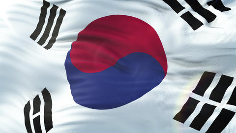Flag of South Korea waving on sun. Seamless loop with highly detailed fabric Animation