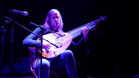 Skilled musician playing lute at concert Footage