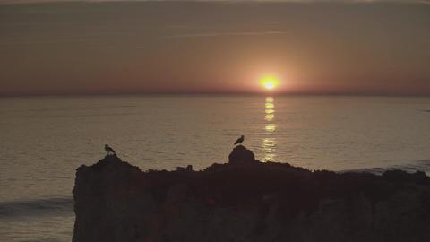 4K Beautiful sunset at the beach, amazing colors GIF