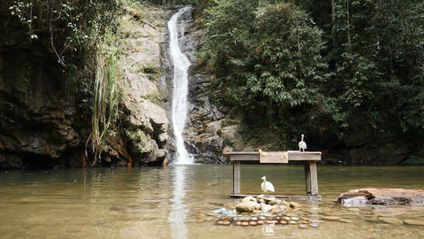 Cold drinks in water at Pamuayan waterfall near Port Barton, Philippines Footage