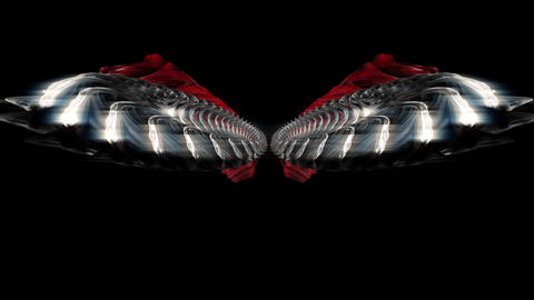 The Rise of the Silver Space Wings Full HD VJ Loop Animation