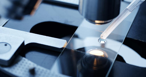 Examining of test sample under the microscope in laboratory Footage