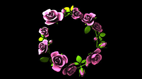 Pink Roses Frame On Black Text Space CG動画