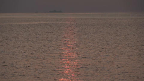 Indian Ocean, sunset and ray. Maldives video Archivo
