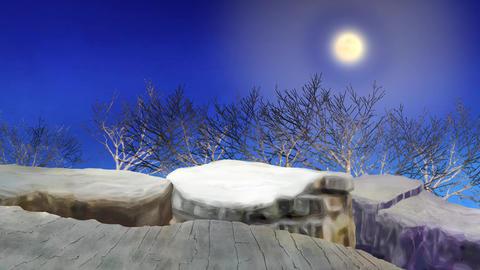 Moonlight trees Stock Video Footage