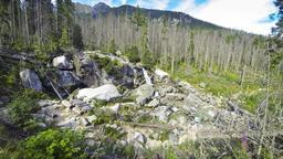 Waterfalls of Studeny potok river in Tatry Mountains, Slovakia Footage