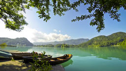 Boats in Bled Lake, Slovenia 영상물