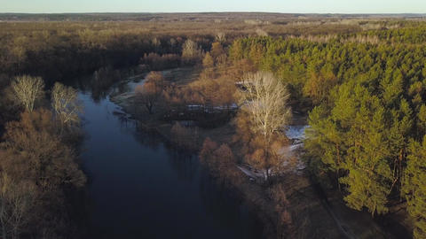 Flying over the trees and river at dawn - aerial videotaping Archivo