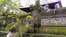 Pura Dalem Agung Padang Tegal,Ubud Monkey Forest,Bali Archivo