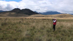 Girl is taking pictures Guanaco exotic mammal wild animal in Andes mountains Footage