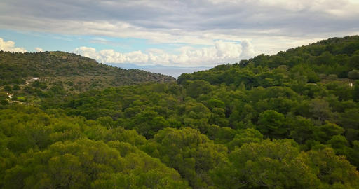 Flight over pine forest of Aegina island, Greece with dramatic sky Footage