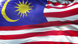 Flag of Malaysia waving on sun. Seamless loop with highly detailed fabric GIF
