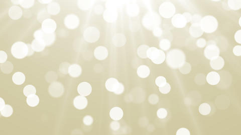 Gold Particles. Natural Floating Organic Particles On beatiful Background Footage