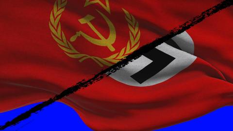 World War 2 Soviet Russia VS Nazi Germany Flags on a Green Screen Footage
