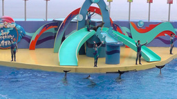 Participants of the show with the dolphins bid farewell... Videos de Stock