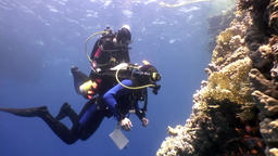 Two deepwater scuba divers swimming near coral reefs underwater in Red sea Footage