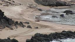 Sandy coast Galapagos Islands Footage