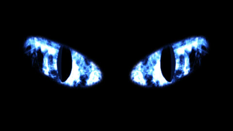Scary Blinking Black Cat Eyes Animation