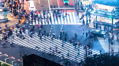 Time-lapse of the famous scramble intersection in Shibuya, Tokyo Footage