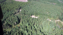 Forest green thick top view from the helicopter window in New Zealand Footage