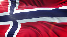 Flag of the Norway waving on sun. Seamless loop with highly detailed fabric Animation