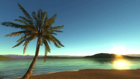 Tropical Beach Animación