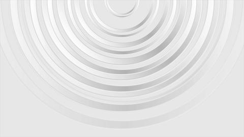 Grey modern glossy abstract circles video animation Animation