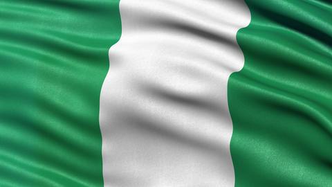 4K Nigeria flag seamless loop Animation