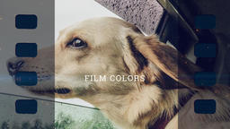 Frames Premiere Proテンプレート