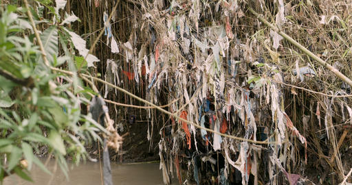 Pan showing the large extent of plastic trash wrapped around plants, branches Footage