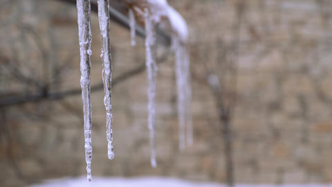 Close-up of icicles Footage