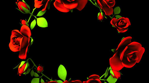 Red Roses Frame On Black Text Space Animation