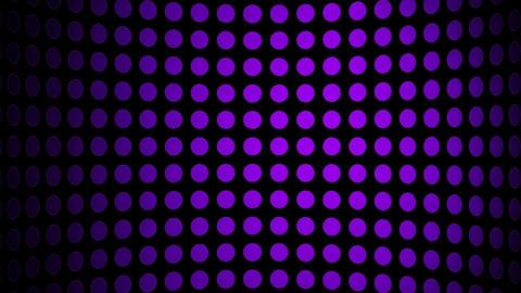 purple array Stock Video Footage