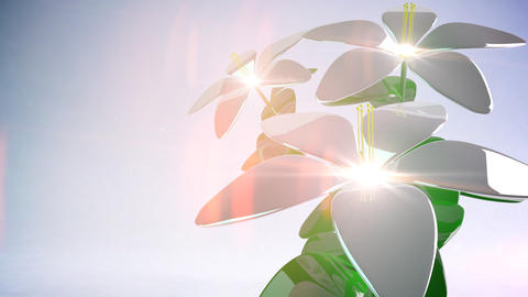 Abstract 3D Flower. Background. Loop Stock Video Footage