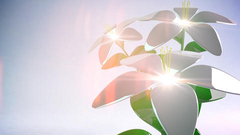 Abstract 3D Flower. Background. Loop Animation