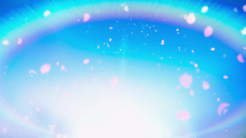Cheery Blossom Rainbow 01A Stock Video Footage