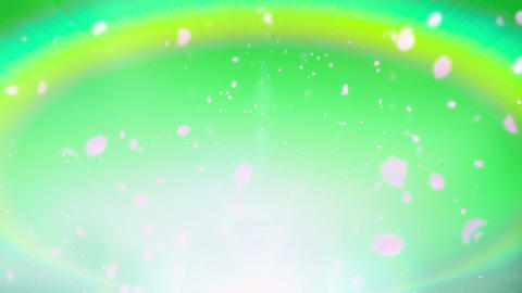 Cheery Blossom Rainbow 01E Stock Video Footage