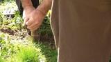 Senior Couple Doing Gardening In Their Backyard 01 stock footage