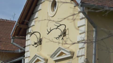 Hunter House Decoration Footage
