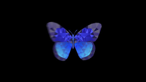 MosacBlue butterfly various flyingAni ALL After Effects Template