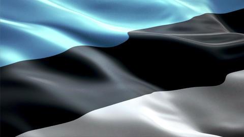 Flag Estonia Animation