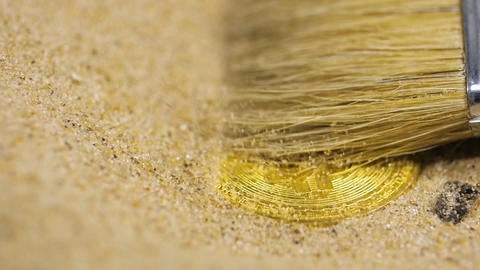 Fur Brush Cleans up Bitcoin Real Model from Sand Footage