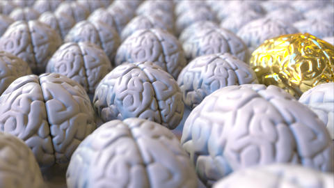 Brain made of gold among the ordinary ones. Genius, mastermind, talent or Footage