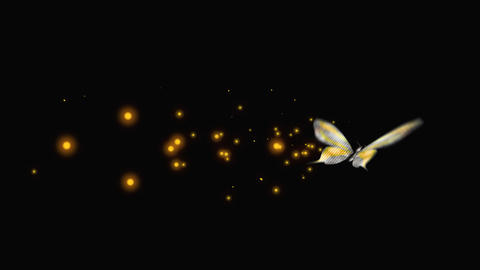 Butterfly FancyGold V9 blur Animation
