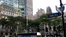 New York City 556 buildings at crossing 5th Ave East 41st Street Footage