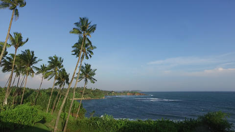 view to ocean from Sri Lanka island with palms Footage
