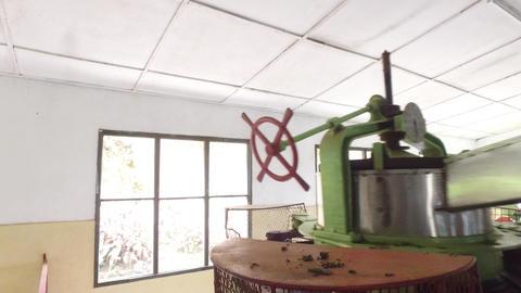 machine grinding tea raw on factory Footage