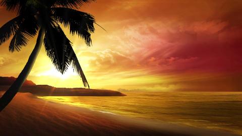 Sunset Fantasy Animation
