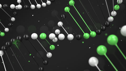 Gloss model of black, white and green DNA strand on black background Animation